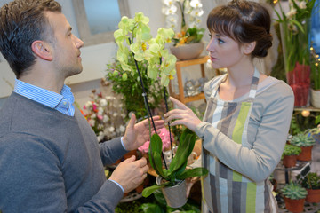florist woman and man or customer at flower shop