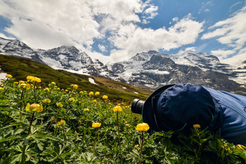 Young girl with hat taking closeup photos of beautiful flowers in Swiss Alsp. Scenic panoramic landscape in the background