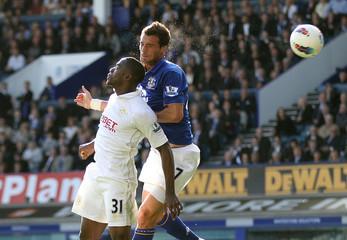 Everton v Wigan Athletic Barclays Premier League