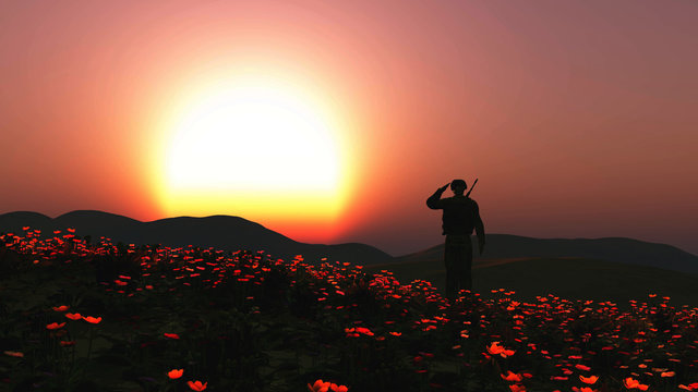 3D soldier saluting in a field of poppies