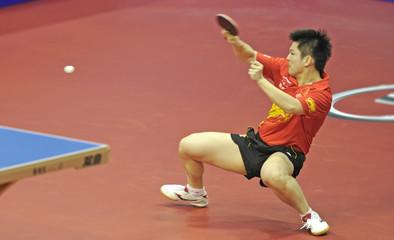 GAC Group 2013 ITTF World Tour Grand Finals