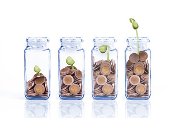 Money coins in bottle on white background,Business investment growth concept
