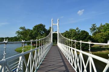 bridge in park