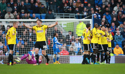 Brighton & Hove Albion v Brentford - Sky Bet Football League Championship