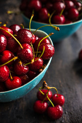 Summer organic fruit concept