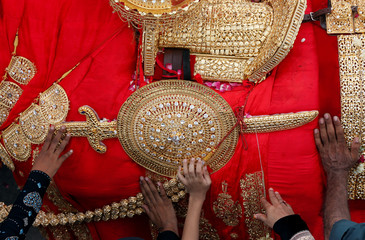 Shiite Muslims reach out to touch the gold-ornamentation of sword and shield, placed on a symbolic sacred horse for a good luck, during the Youm Ali procession in Karachi