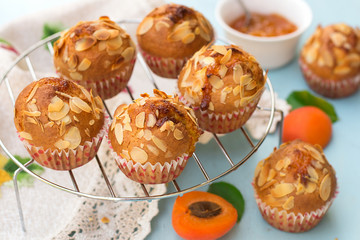 Apricot muffins with sliced almonds