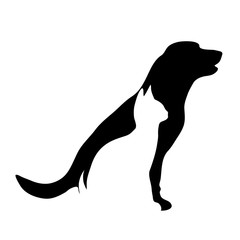 Vector silhouette of dog and cat logo on white background.