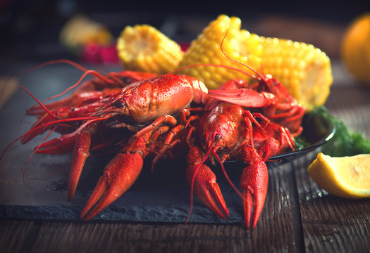 Crayfish. Creole style crawfish boil serving with corn and potato