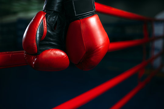Gloves on the ring ropes, boxing concept, nobody
