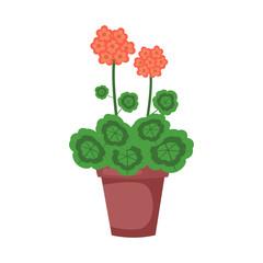 Geranium flower. Vector