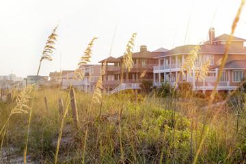 Summer Beach Houses for Rent