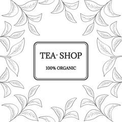 Green tea, shop, new