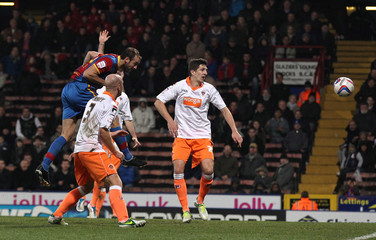 Crystal Palace v Blackpool - npower Football League Championship