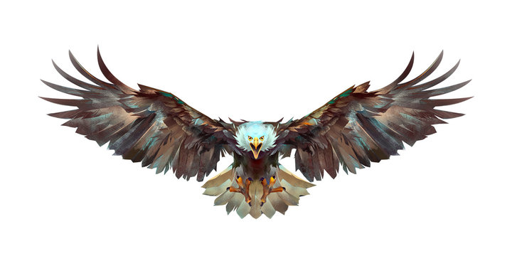 painted a flying eagle on a white background front