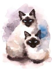 Siamese Cats Watercolor Hand Painted Pet Portrait Illustration