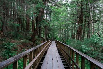 Gold Creek Flume Trail