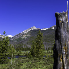 Stream, peaks, pines, and a snag in Rocky Mountain National Park