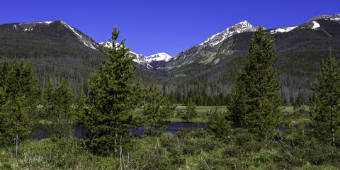 Stream, pines, snowy peaks, and blue sky in Rocky Mountain National Park