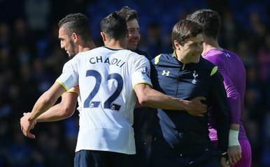 Everton v Tottenham Hotspur - Barclays Premier League
