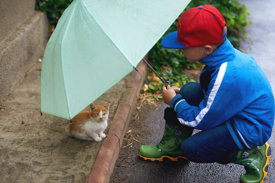 the child taking care of a kitten on the street , an umbrella sheltering him from the rain .
