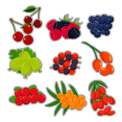 Vector illustration logo isolated berry strawberry cherry raspberry blackberry currant gooseberry wild rose blueberry cranberry.