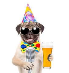 Funny puppy in birthday hat and sunglasses holding light beer and retro microphone. isolated on white background