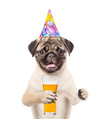 Funny puppy in birthday hat holding light beer. isolated on white background