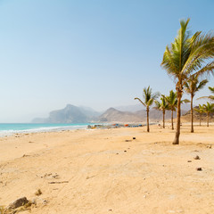 Fotobehang Rio de Janeiro in oman arabic sea palm the hill near sandy beach sky and mountain