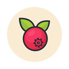 cartoon cranberry icon