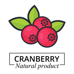 cartoon cranberry label vector