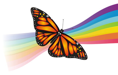 Butterfly, monarch, wings, flying, insect, nature, cartoon, black, orange, white, colored, rainbow, lines,