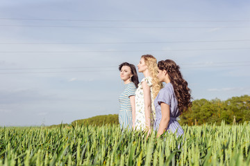 Three beautiful lady or women in wheat field