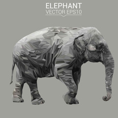 Elephant low poly design. Triangle vector illustration.