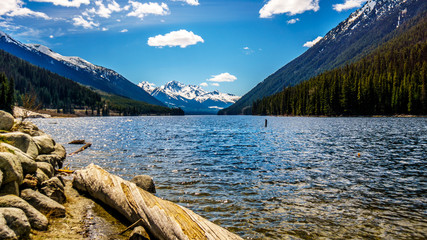 Logs laying on the shore of Duffey Lake surrounded by snowy peaks of the Coast Mountains with Mount Rohr at the south end of the lake. Duffey Lake is between Pemberton and Lillooet in British Columbia