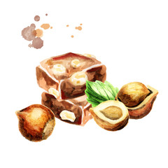Chocolate with hazelnuts. Watercolor hand-drawn illustration