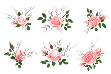 Bouquet of pink roses, can be used as greeting card, invitation card for wedding, birthday and other holiday and spring, summer background. Vector illustration EPS10.