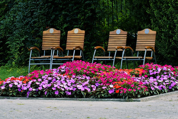 Chairs and a discount for multicolored flowers, park