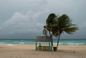 A hurricane is about to batter this caribbean beach hut. The seas are raging and the skies show the tropical storm as the power of nature is demonstrated. Waves crash on the shore