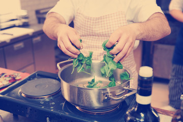 Chef is putting spinach in casserole, toned
