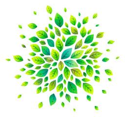 Green cartoon style vector leaves splash
