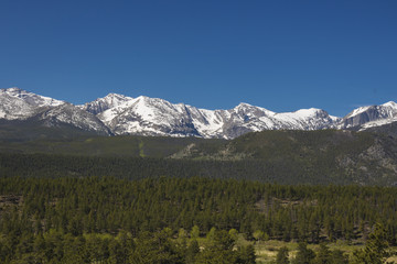Mountains and forest of Rocky Mountain National Park