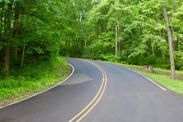 In the middle of a road that curves up the hill.