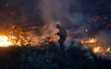 Firefighters work to put out a forest fire near the village of Fato in central Portugal