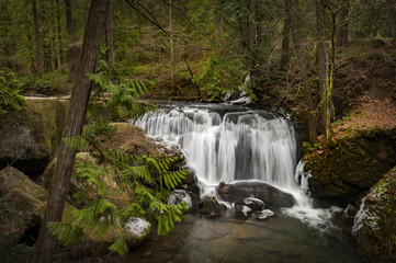 Whatcom Falls. Whatcom Falls in Bellingham, Washington, where a cascading waterfall is its centerpiece. The falls in the park are on Whatcom Creek, leading from Lake Whatcom to Bellingham Bay.