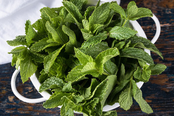 Mint in a strainer