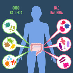 Intestinal flora gut health vector concept with bacteria and probiotics icons