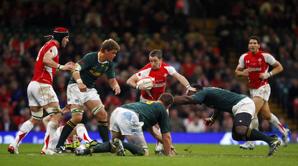 Wales v South Africa Invesco Perpetual Autumn Series