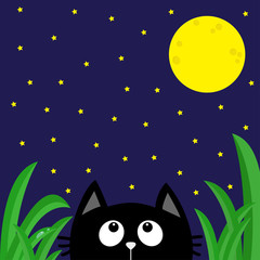 Black cat looking stars and moon in the dark night. Green grass dew drop. Cute cartoon character. Kawaii romantic animal. Greeting card. Flat Blue background. Isolated.