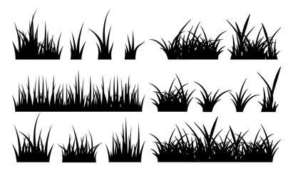 Monochrome illustration of grass. Vector silhouettes